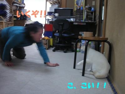 Blogup13_1